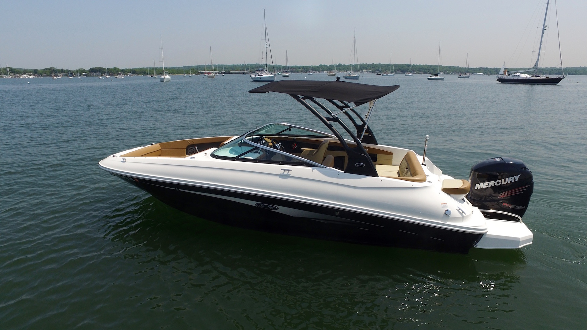 Sea Ray 24 ft